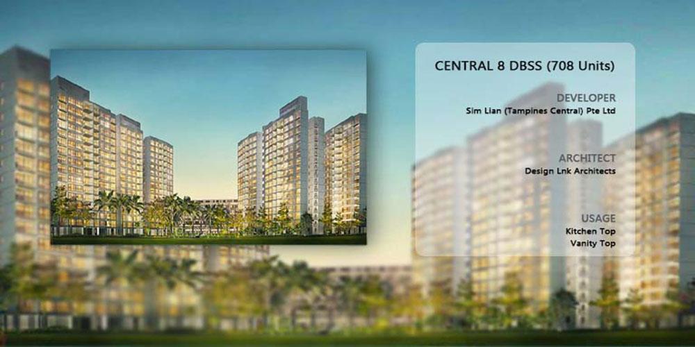 Central 8 DBSS